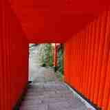 日本五大稲荷の一つで、島根県津和野町にある「太皷谷稲成神社」に行ってきたけど、そもそも「稲荷神社」って何!?