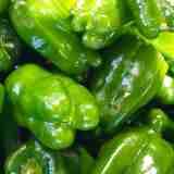 緑の野菜で風邪に負けない力を! たくさん食べて元気に過ごそう!