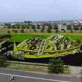 農業と大地の芸術!「田んぼアート」のストーリー