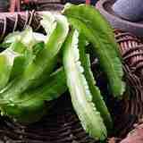 見たことがない野菜、最近どんどん増えている。新顔野菜、知っていますか?