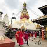 ネパールの世界遺産「モンキーテンプル」
